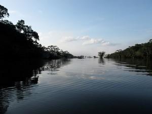Un voyage sur mesure dans la réserve de Cuyabeno