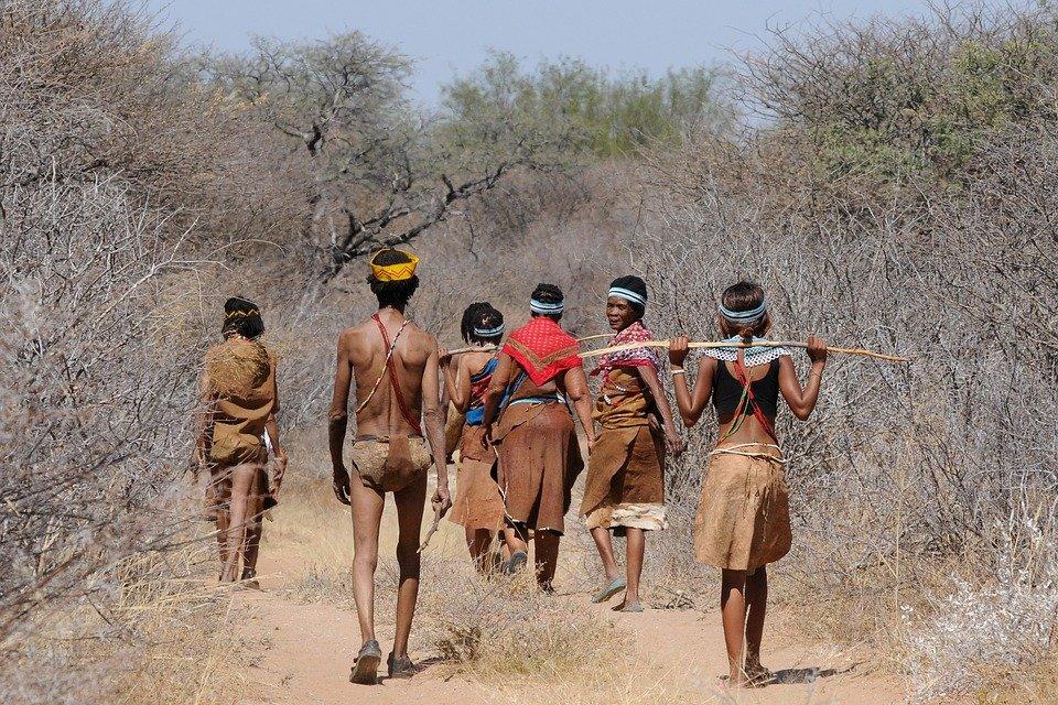 Le Botswana, une destination touristique unique