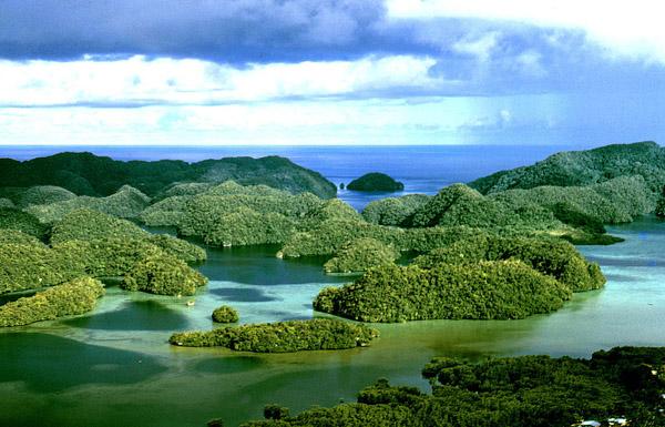 La plongée sous-marine au Palau