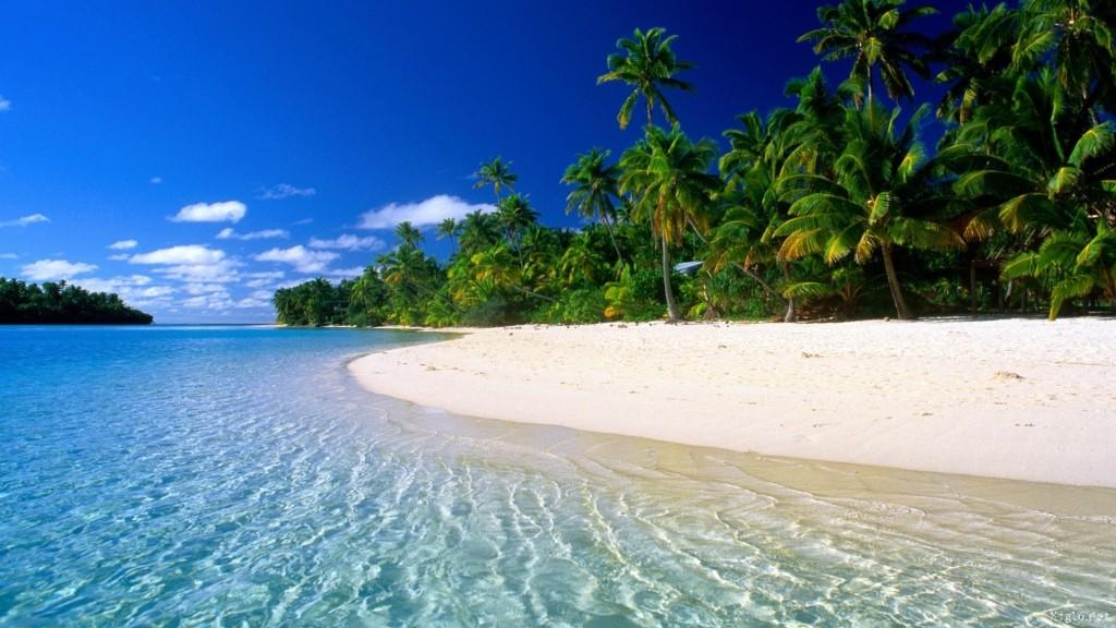 Top 5 des incontournables en Guadeloupe