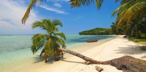 Un voyage à Madagascar pour un voyage de découverte ?