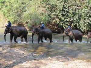 Que visiter à Phuket ?